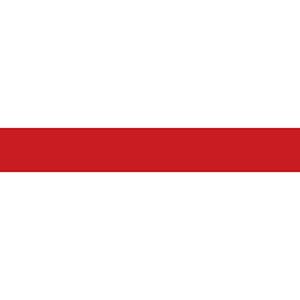 ELETRORASTRO